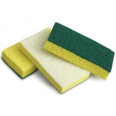Scour Sponge